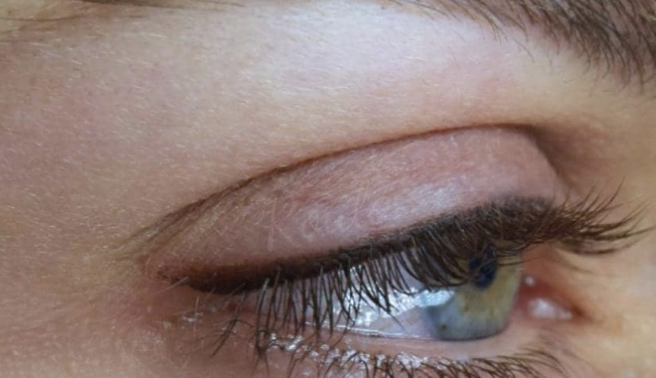 Image of brows done at Brau.
