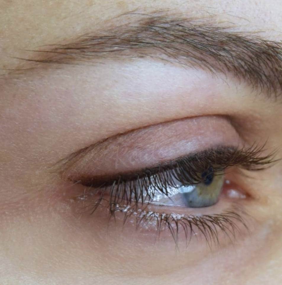 Image of brows done at Brau.